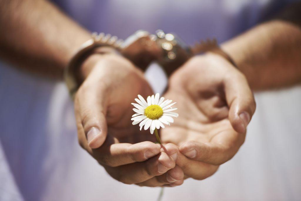 Mann med håndjern holder en blomst